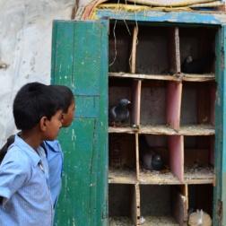 2012India092