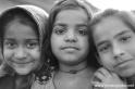 2012India530
