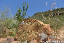 2013.11_Cedar Mountains-48