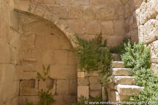 2014 Jordan_Jarash-28