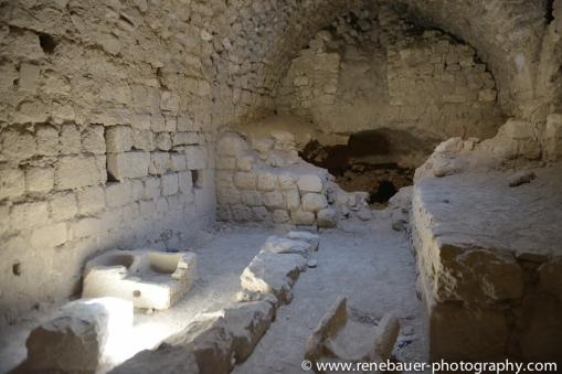 2014_Jordan_dead sea_mt nebu_madaba_kerak-26