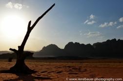 2014_Jordan_Wadi Rum-25