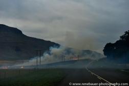 2014_ZA_drakensbergen-19