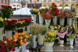 2015_krakow_blog-13