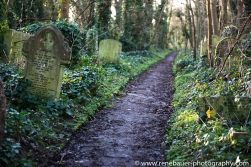 lost on cemetery