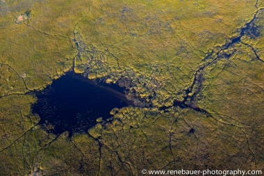 2015.7.13.okavango_flight-20