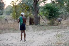 2015_zambia_sth luangwa-11