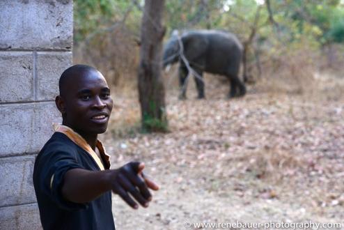 2015_zambia_sth luangwa-14