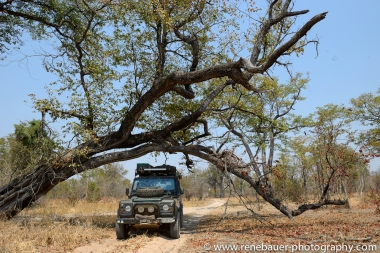 2015_zambia_sth luangwa-30