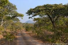 2015_zambia_sth luangwa-31