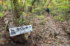 2015_Yufuin_oike-19