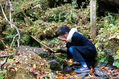 2015_Yufuin_oike-21