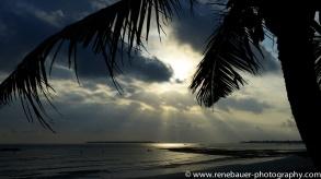 2016-2_tz_beach-11