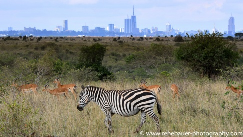 2016-12_ke_mt-kenya-23