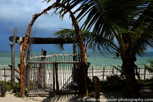 2017-01_tz_jambiani_beach-13