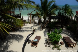 2017-01_tz_jambiani_beach-14