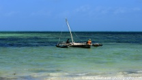 2017-01_tz_jambiani_beach-18