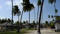 2017-01_tz_jambiani_beach-21