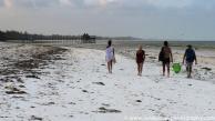 2017-01_tz_jambiani_beach-26