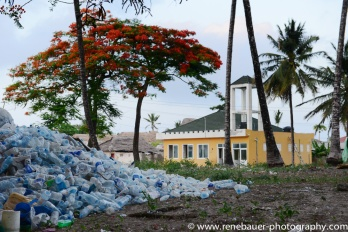 2017-01_tz_jambiani_beach-28