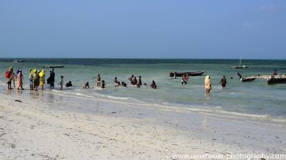 2017-01_tz_jambiani_beach-31