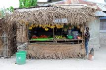 2017-01_tz_jambiani_village-25