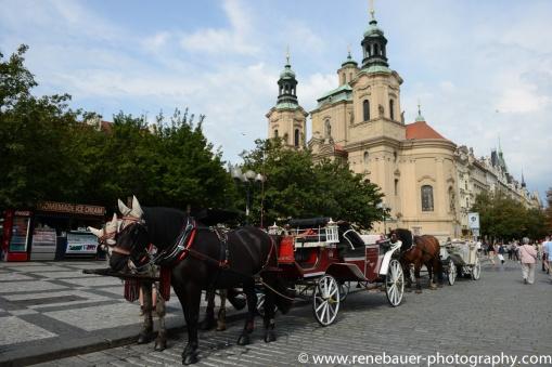 2017.8_EastEurope_Prag-22