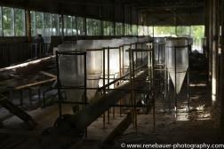 2017.9_EastEurope_chernobyl.03-11