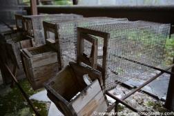 2017.9_EastEurope_chernobyl.03-20