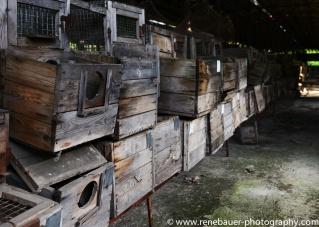 2017.9_EastEurope_chernobyl.03-21