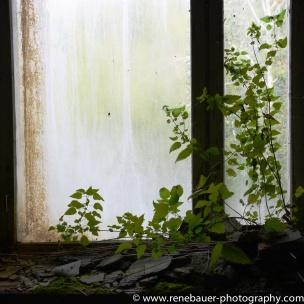 2017.9_EastEurope_chernobyl.03-50
