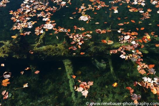 2017.9_EastEurope.59_plitvicka_lakes-17