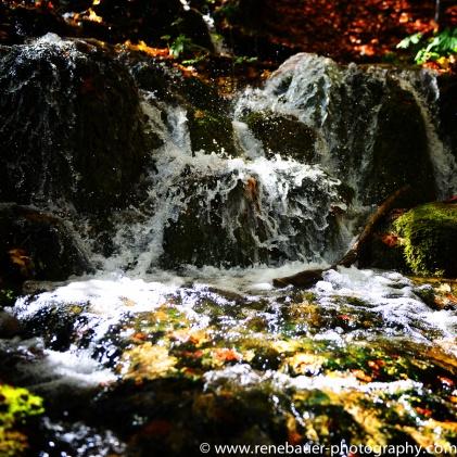 2017.9_EastEurope.59_plitvicka_lakes-20