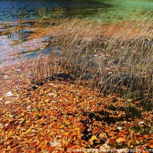 2017.9_EastEurope.59_plitvicka_lakes-32