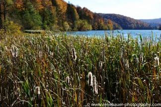 2017.9_EastEurope.59_plitvicka_lakes-33