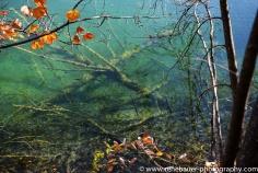 2017.9_EastEurope.59_plitvicka_lakes-34