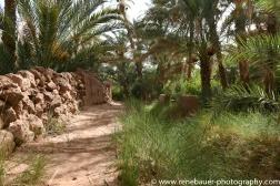 2018_bestof_morocco-32